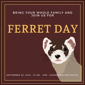 Ferret Day 2019